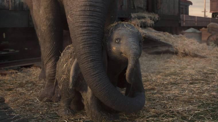 Dumbo e Sra. Jumbo em cena